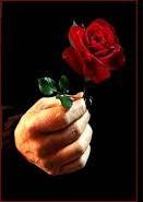 Rosa en mano